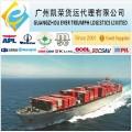 Sea freight from Ningbo/Shanghai/Guangzhou/Shenzhen to Iran(ABBAS)
