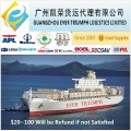 DDP/DDU Shipping Sea Freight from China to Malaysia/Philippines/Indonesia/Singapore